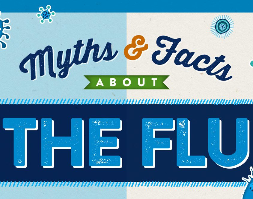 Myths & Facts about the Flu Infographic